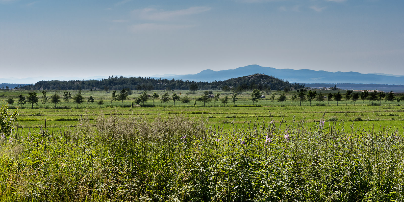 Vue du paysage champêtre environnant la micro-brasserie Brughel