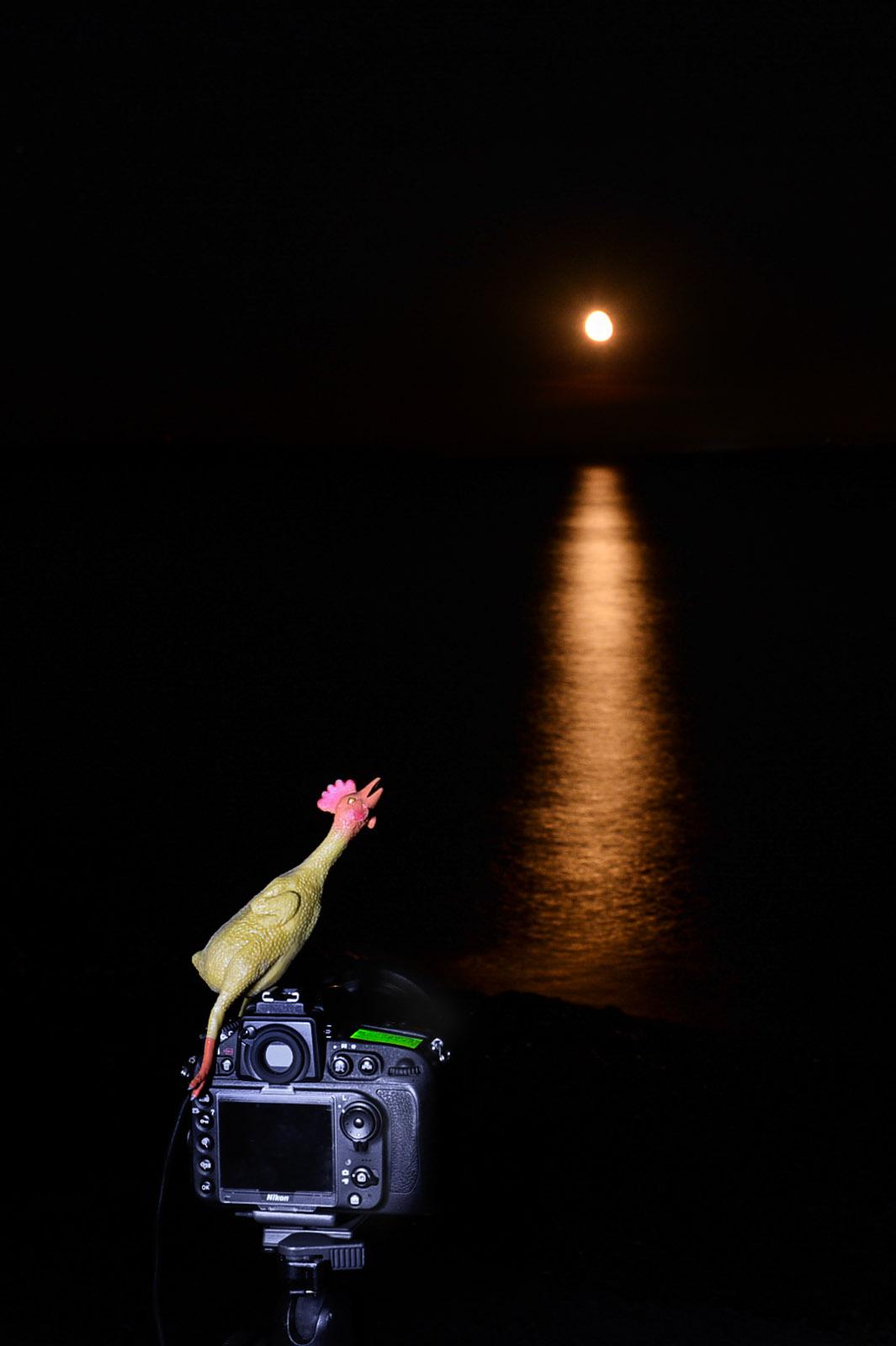 Pleine Lune 28 juillet 2013